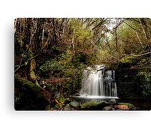 Strickland Avenue Falls,South Hobart,Tasmania Canvas Print