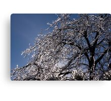 Sparkling Icy Tree - Mother Nature's Decoration Canvas Print