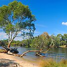 Bassendean  Riverbank by HG. QualityPhotography