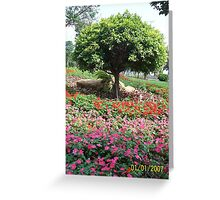 Flowers of Asia Greeting Card