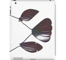 Earth, Air and Water iPad Case/Skin