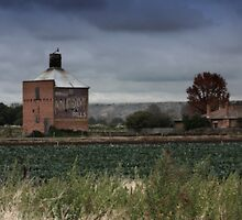 The Old Chicory Kiln, Bacchus Marsh by Penny Lewis