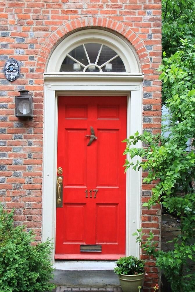 Red door by supermimai