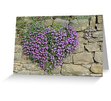 Heart-Shaped Flowers on Yorkshire Stone Wall Greeting Card
