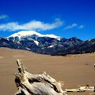 Great Sand Dunes National Park, CO  by rwhitney22