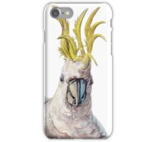 Sulphar-Crested Cockatoo iPhone Case/Skin