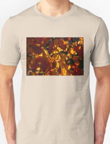 Bold and Colourful - Take 3 T-Shirt