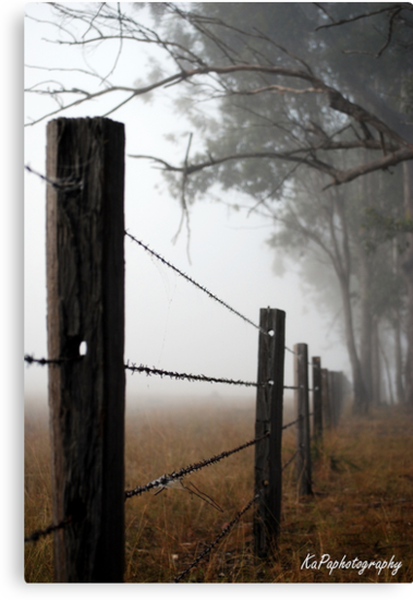 Misty Wire by KaPaphotography