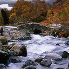 Ashness Bridge, Cumbria, England by Craig Joiner
