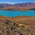 Lake Tekapo by Peter Hammer