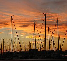 yachts at sunset- North Haven by Christine Keech