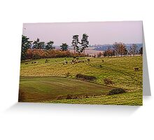 Bovine Gathering Greeting Card