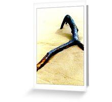 Driftwood #1 - Postcard Greeting Card