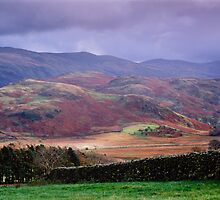 High Rigg and Dale Bottom, Cumbria by Craig Joiner