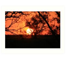 Queensland Spring Sunset Art Print