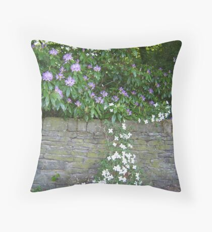 I Will Overcome Throw Pillow