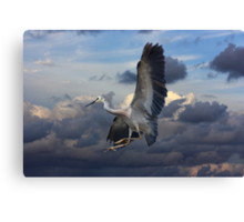 The Harsh Cry Landing Canvas Print