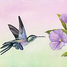 Hummingbird at Morning Glory by Charlotte Yealey