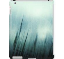 Sirocco iPad Case/Skin
