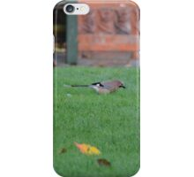 Jay On The Lawn iPhone Case/Skin