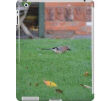 Jay On The Lawn iPad Case/Skin