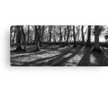 Railway Trees Canvas Print