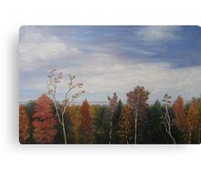 Oil - Autumn View Canvas Print