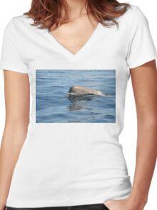 Rare North Atlantic Bottlenose Whale Women's Fitted V-Neck T-Shirt