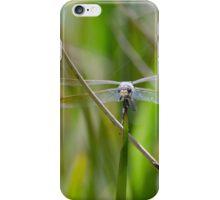 Dragon Flier iPhone Case/Skin