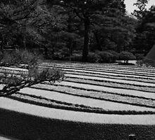 the lines of zen by vesa50