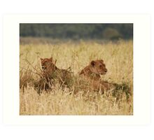 Young Brothers Hanging Out. Art Print