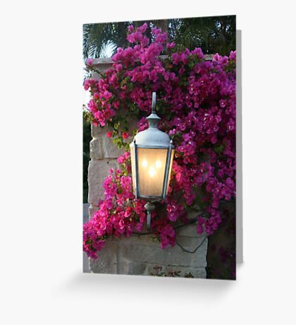 7pm...Light Comes On!! Greeting Card