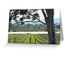 St Huberts Winery Greeting Card