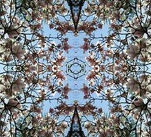 Magnolia Mandala by April Johnson