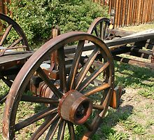 Cart Wheel by Darcy Overland