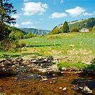 A day in Glendalough by Martina Fagan