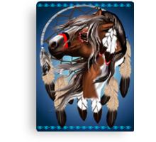 Paint Horse Dreamcatcher Canvas Print