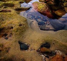 Rock Pool  by WobblyWombat