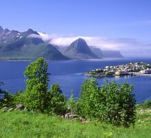Beautiful island in Norway by ibphotos