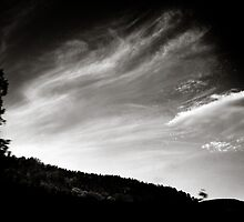travelling clouds by Dorit Fuhg