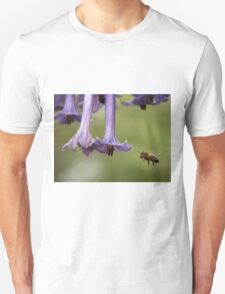 Busy bee, Somerset, Tasmania,  Australia. T-Shirt