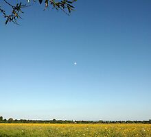 Beautiful Day in Upton Upon Severn by LisaRoberts