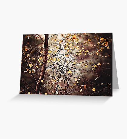 Last days of Autumn Greeting Card