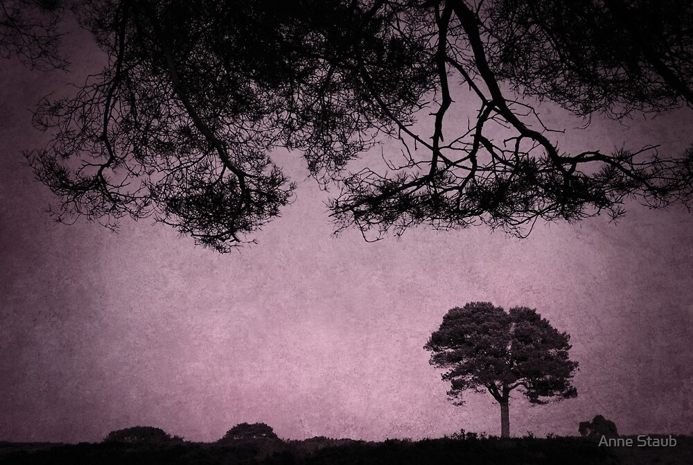 Landscape by Anne Staub