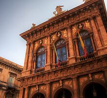 Il Teatro Massimo Bellini by Andrea Rapisarda