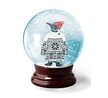 Snow Globe 6 Photographic Print
