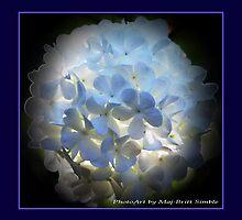 """""""Snowball bush"""" by Maj-Britt Simble"""