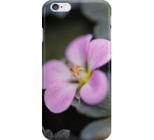 Silky Smooth Petals iPhone Case/Skin