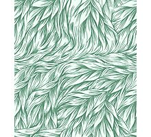 Fur in Mint Photographic Print
