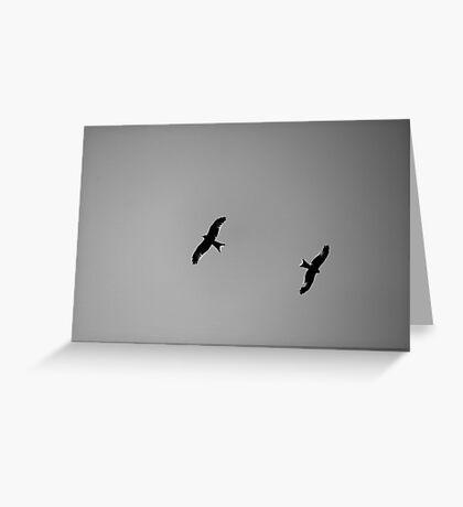 Birds of Prey Greeting Card